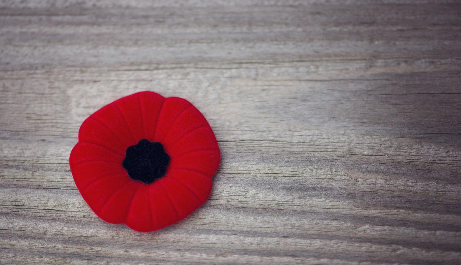 Remembrance Day Closure (Nov 11)